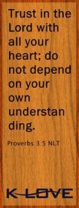 klove_verse_pin_proverbs_3_5_nlt